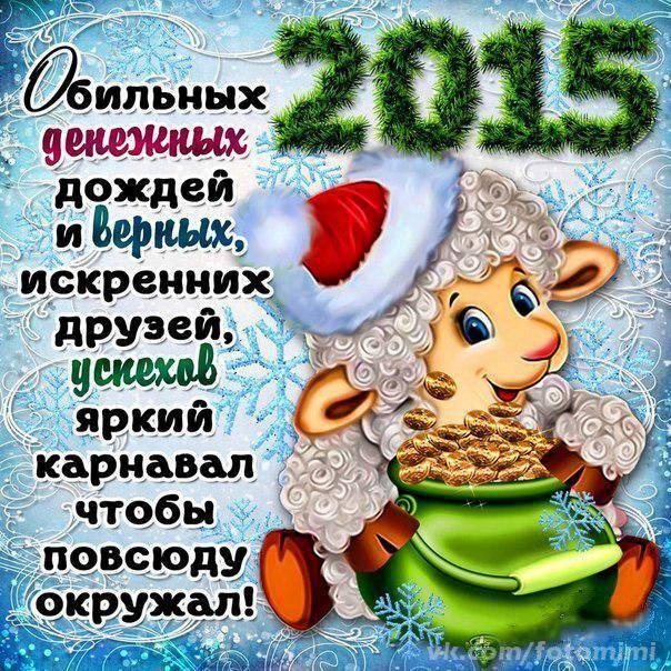 2015 год овцы