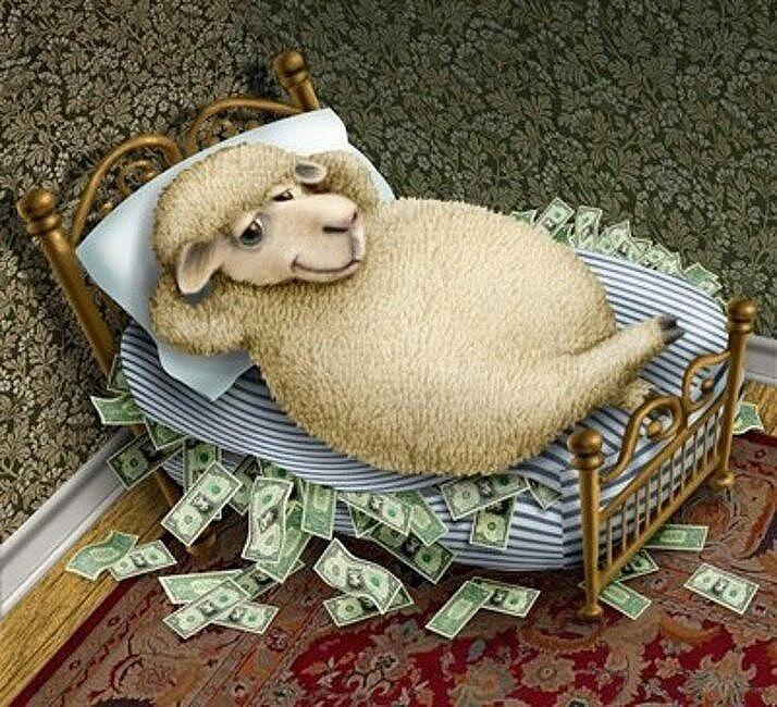 2015-год-овцы