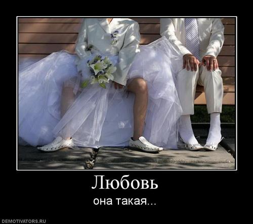 Картинки, картинки про свадьбу с надписями смешные до слез